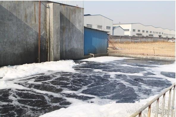 湖南永州市丽华医药污水处理项目